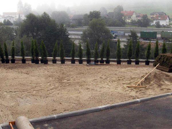 Travnik pred obnovo okolice vašega doma